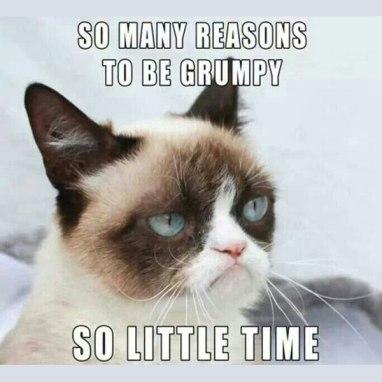 grumpy-cat-meme-00